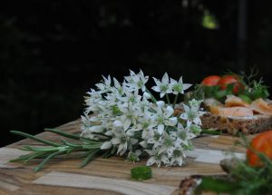 onion blossom, rosemary, salmon sandwiches
