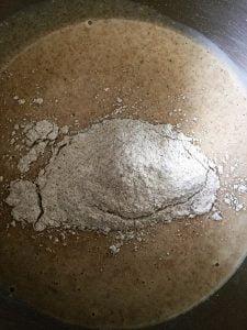 Pre-dough after 14-hour fermentation